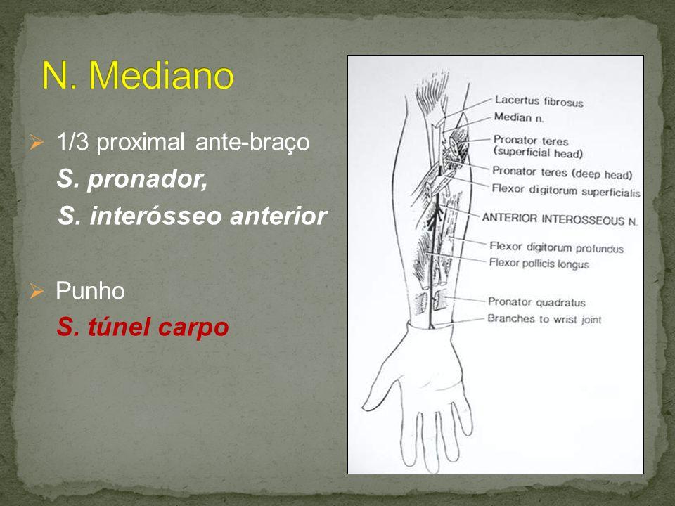 N. Mediano 1/3 proximal ante-braço S. interósseo anterior Punho