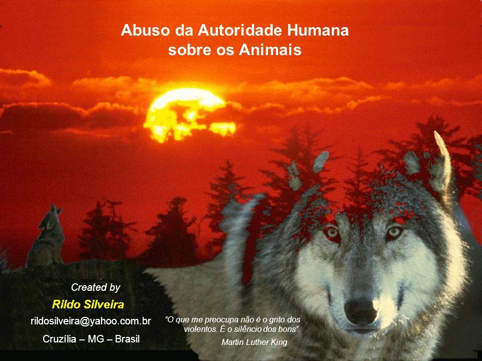 Abuso da Autoridade Humana sobre os Animais