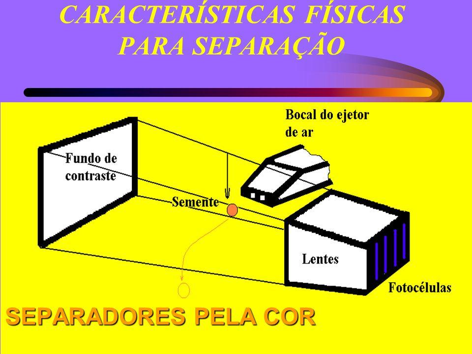 CARACTERÍSTICAS FÍSICAS PARA SEPARAÇÃO