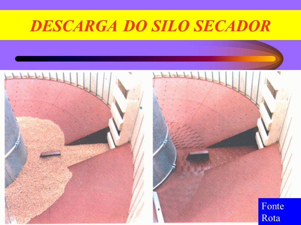 DESCARGA DO SILO SECADOR