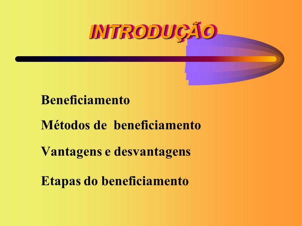 INTRODUÇÃO Beneficiamento Métodos de beneficiamento