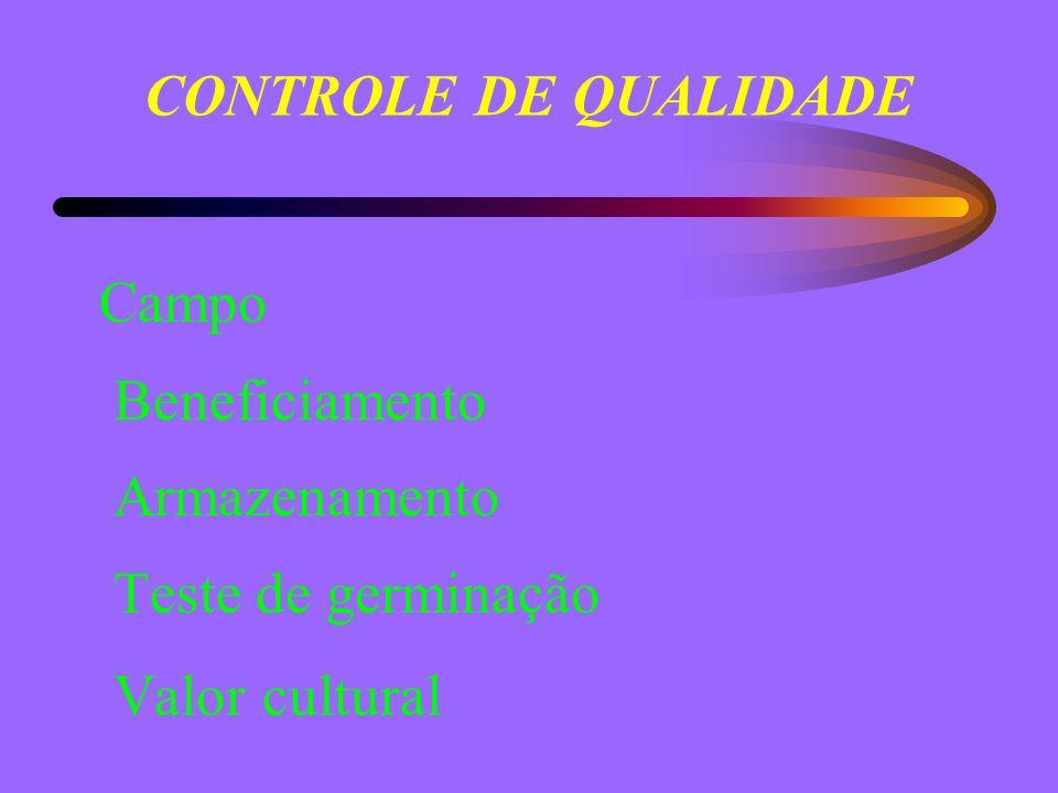 CONTROLE DE QUALIDADE Campo Beneficiamento Armazenamento Teste de germinação Valor cultural