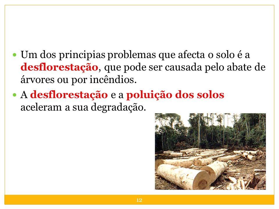 Um dos principias problemas que afecta o solo é a desflorestação, que pode ser causada pelo abate de árvores ou por incêndios.
