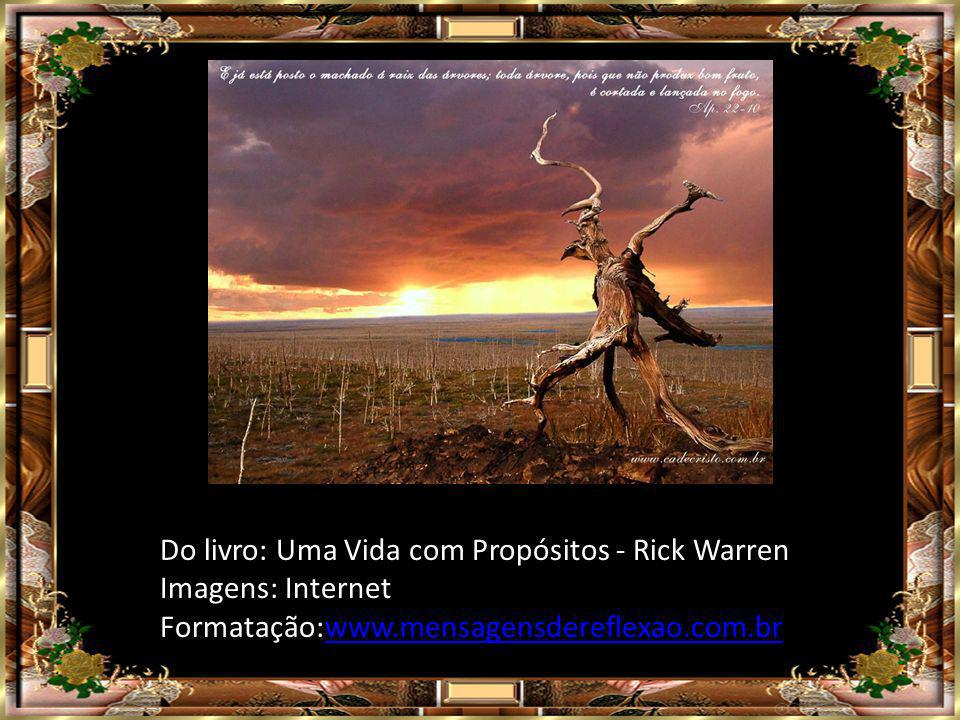 Do livro: Uma Vida com Propósitos - Rick Warren