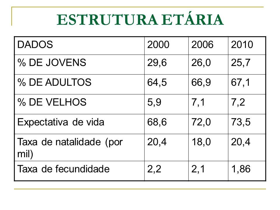 ESTRUTURA ETÁRIA DADOS 2000 2006 2010 % DE JOVENS 29,6 26,0 25,7