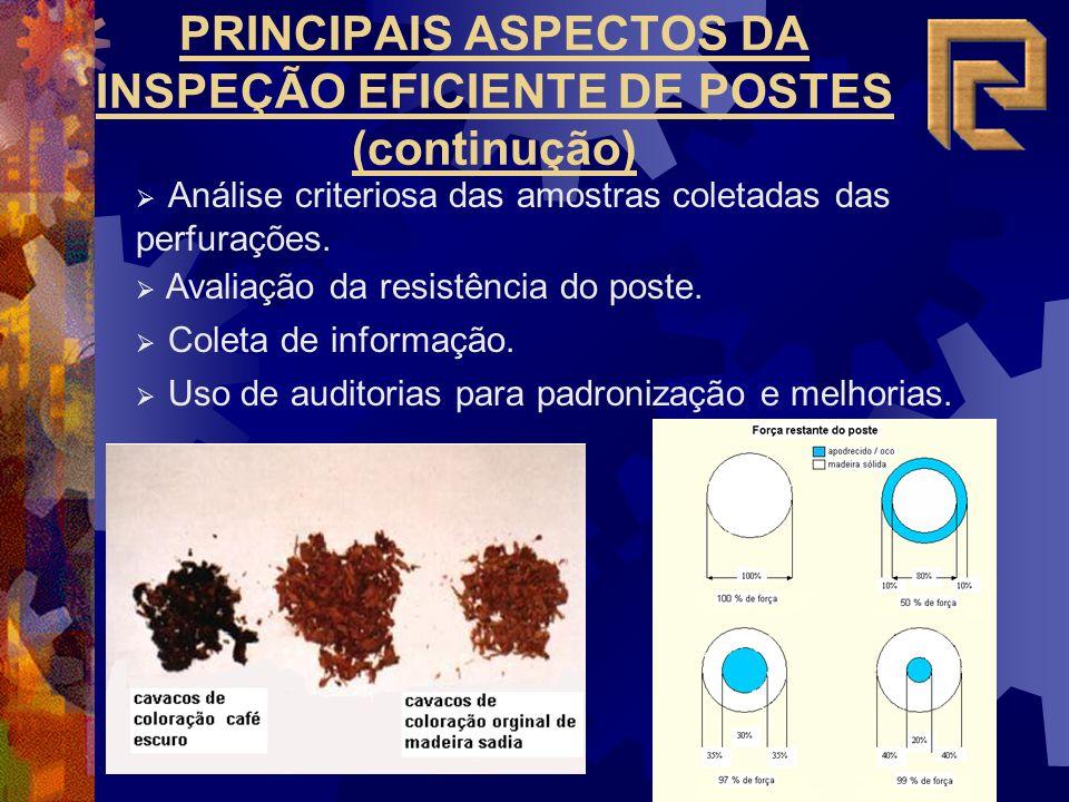 PRINCIPAIS ASPECTOS DA INSPEÇÃO EFICIENTE DE POSTES (continução)