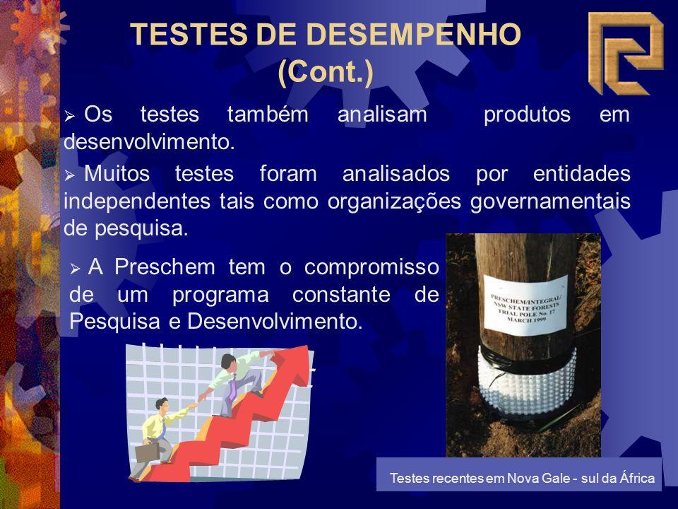TESTES DE DESEMPENHO (Cont.)