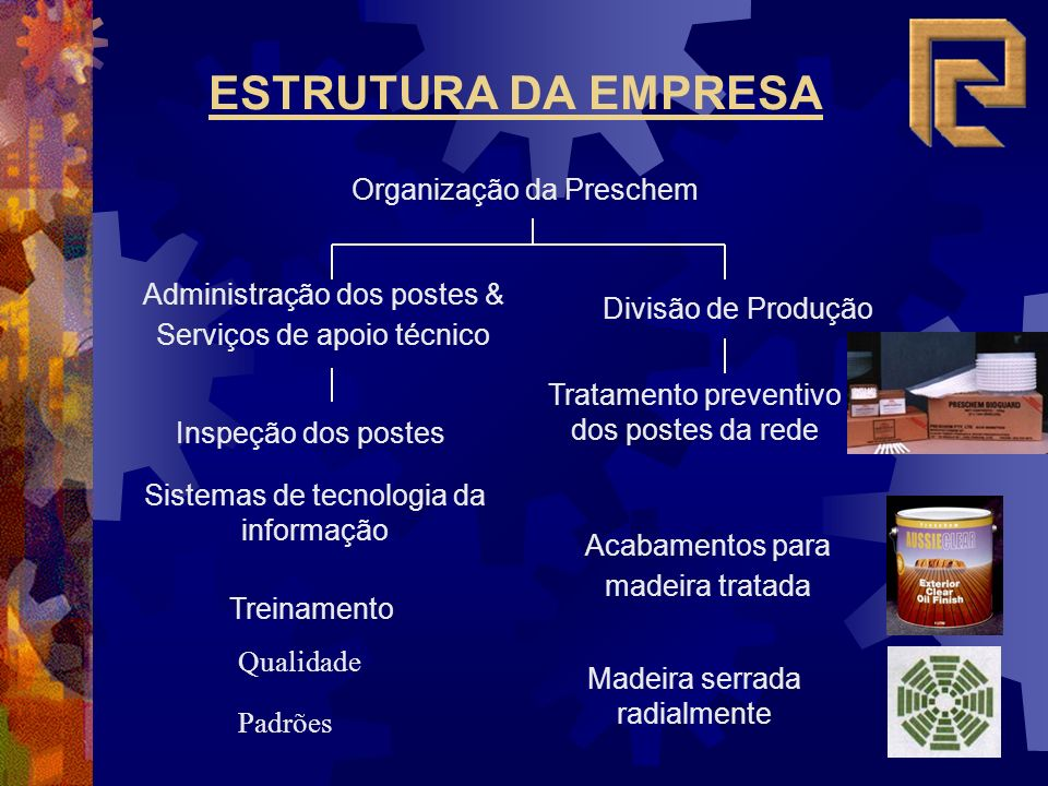 ESTRUTURA DA EMPRESA Organização da Preschem