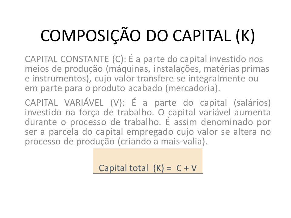 COMPOSIÇÃO DO CAPITAL (K)