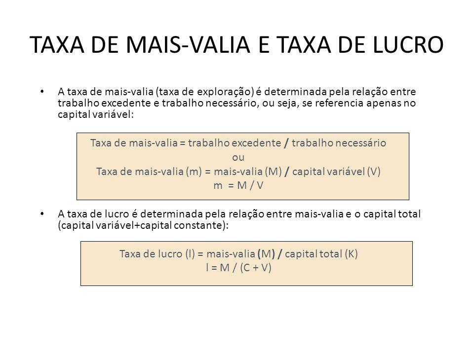 TAXA DE MAIS-VALIA E TAXA DE LUCRO