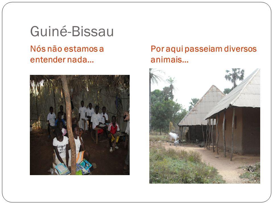 Guiné-Bissau Nós não estamos a entender nada…