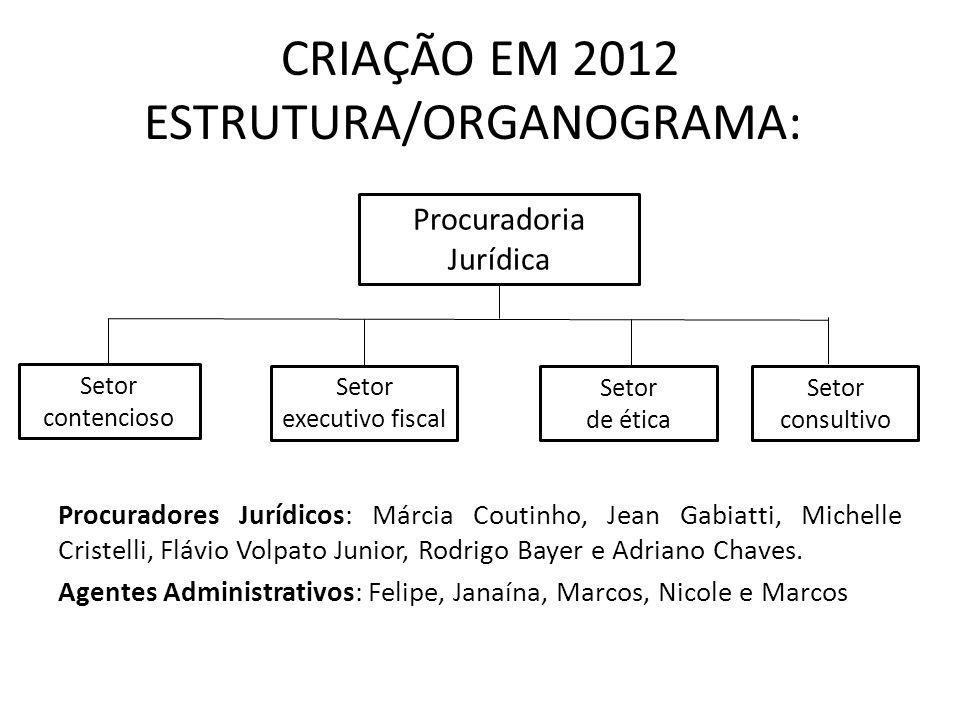 CRIAÇÃO EM 2012 ESTRUTURA/ORGANOGRAMA: