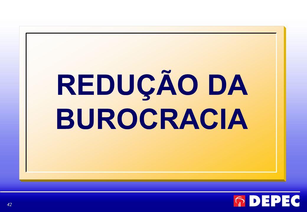 REDUÇÃO DA BUROCRACIA