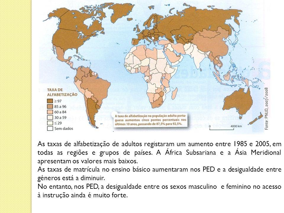 As taxas de alfabetização de adultos registaram um aumento entre 1985 e 2005, em todas as regiões e grupos de países. A África Subsariana e a Ásia Meridional apresentam os valores mais baixos.