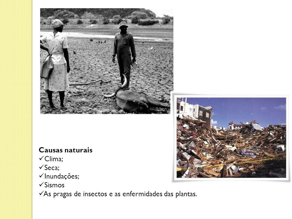 Causas naturais Clima; Seca; Inundações; Sismos.