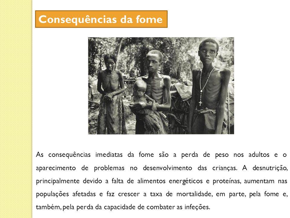 Consequências da fome
