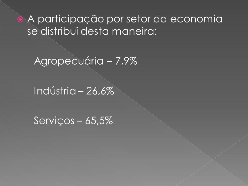A participação por setor da economia se distribui desta maneira: