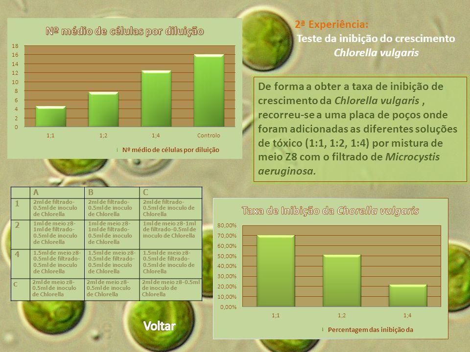 Teste da inibição do crescimento Chlorella vulgaris
