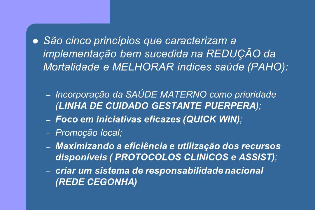 São cinco princípios que caracterizam a implementação bem sucedida na REDUÇÃO da Mortalidade e MELHORAR índices saúde (PAHO):