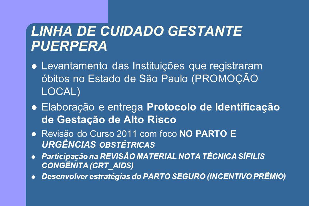 LINHA DE CUIDADO GESTANTE PUERPERA