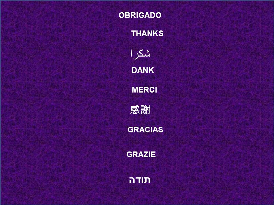OBRIGADO THANKS شكرا DANK MERCI 感謝 GRACIAS GRAZIE תודה
