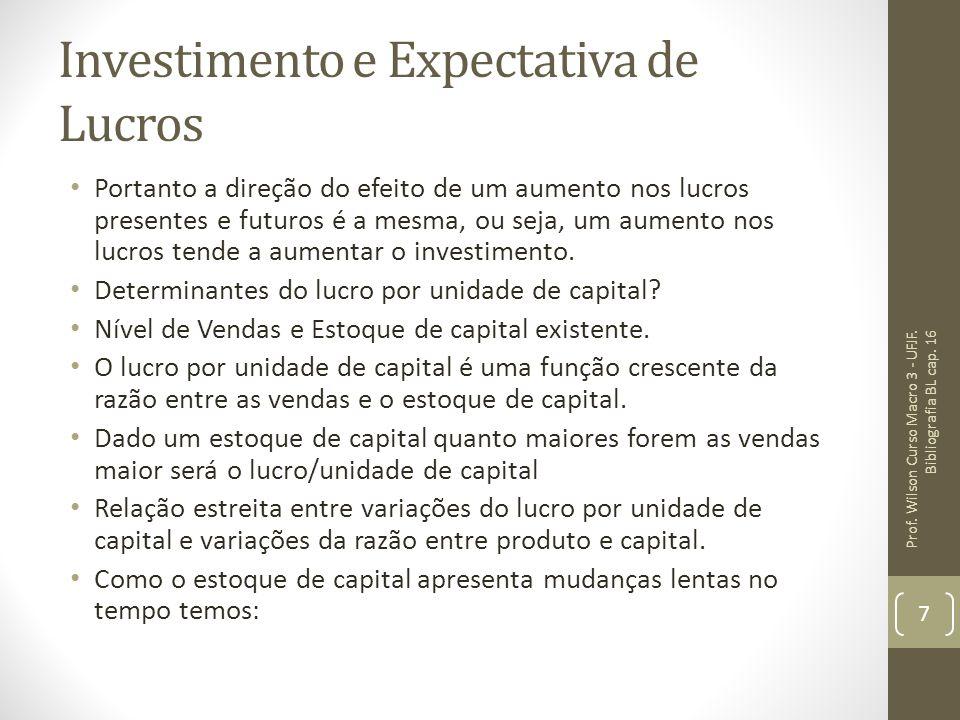Investimento e Expectativa de Lucros