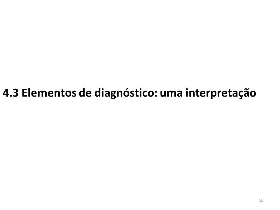 4.3 Elementos de diagnóstico: uma interpretação