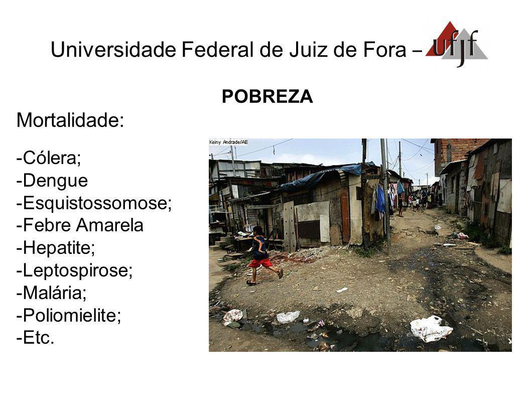 Universidade Federal de Juiz de Fora –