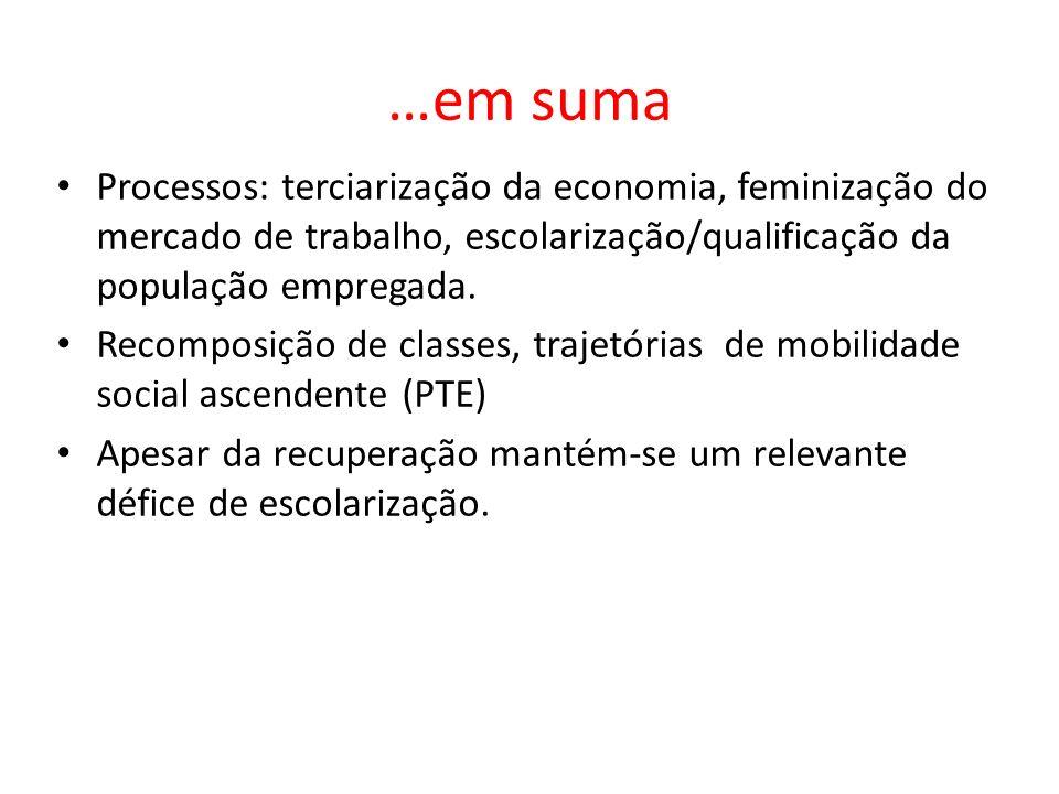 …em suma Processos: terciarização da economia, feminização do mercado de trabalho, escolarização/qualificação da população empregada.