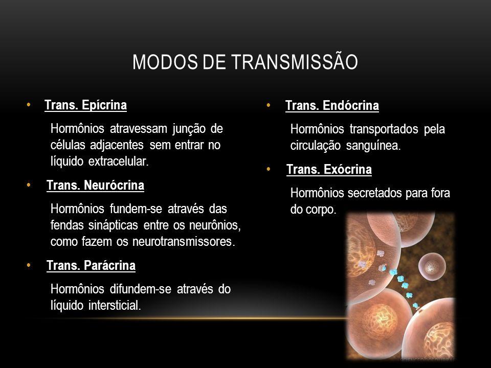Modos de Transmissão Trans. Epícrina Trans. Endócrina