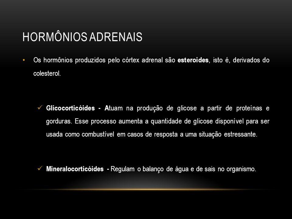 Hormônios Adrenais Os hormônios produzidos pelo córtex adrenal são esteroides, isto é, derivados do colesterol.