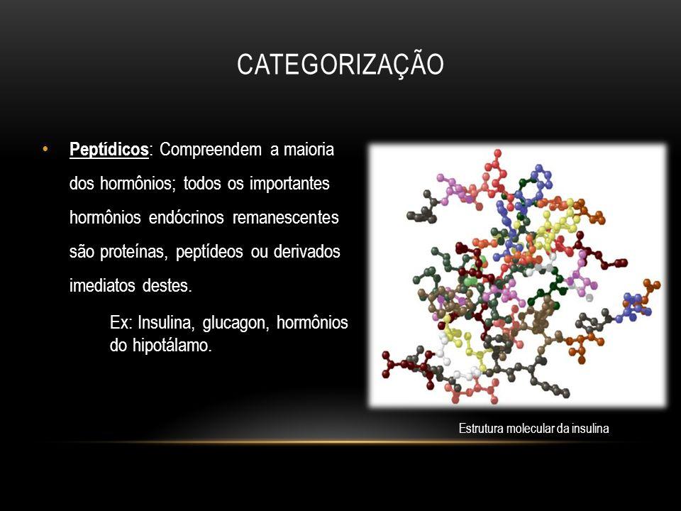 Estrutura molecular da insulina