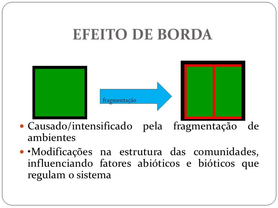 EFEITO DE BORDA Causado/intensificado pela fragmentação de ambientes