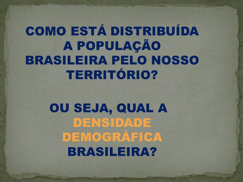 COMO ESTÁ DISTRIBUÍDA A POPULAÇÃO BRASILEIRA PELO NOSSO TERRITÓRIO