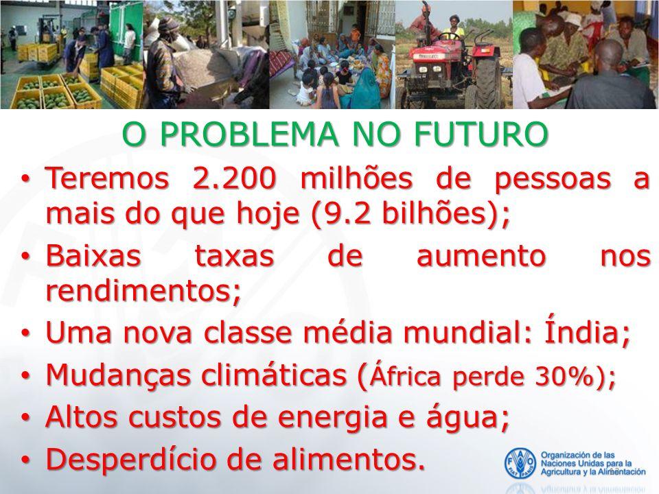 O PROBLEMA NO FUTURO Teremos 2.200 milhões de pessoas a mais do que hoje (9.2 bilhões); Baixas taxas de aumento nos rendimentos;