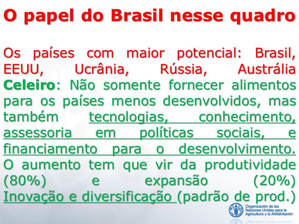 O papel do Brasil nesse quadro Os países com maior potencial: Brasil, EEUU, Ucrânia, Rússia, Austrália Celeiro: Não somente fornecer alimentos para os países menos desenvolvidos, mas também tecnologias, conhecimento, assessoria em políticas sociais, e financiamento para o desenvolvimento.