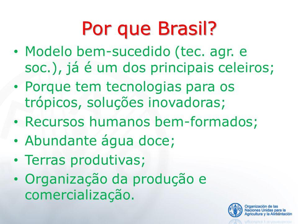Por que Brasil Modelo bem-sucedido (tec. agr. e soc.), já é um dos principais celeiros;