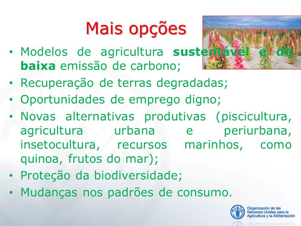 Mais opções Modelos de agricultura sustentável e de baixa emissão de carbono; Recuperação de terras degradadas;