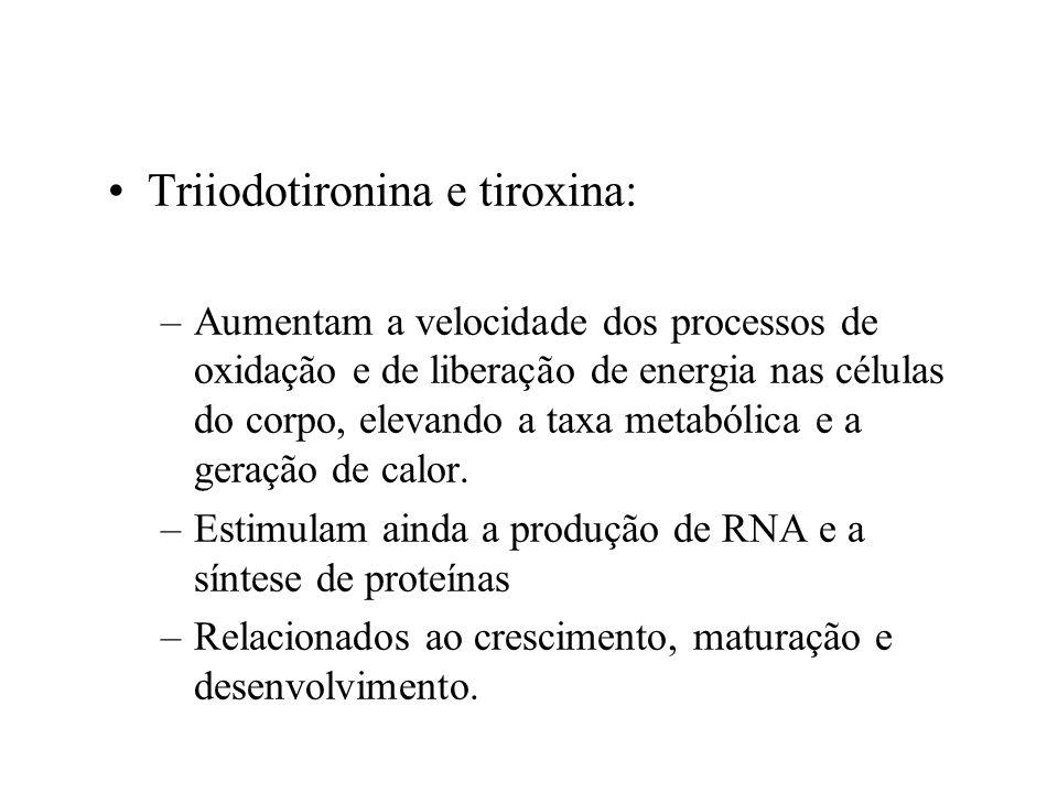 Triiodotironina e tiroxina: