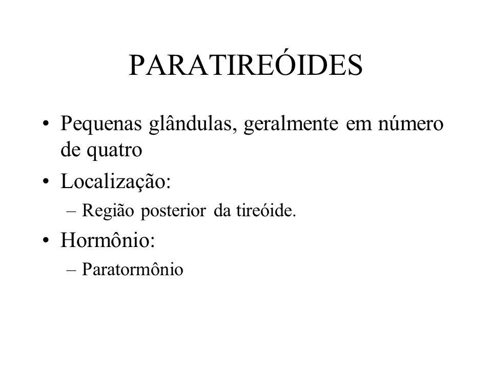 PARATIREÓIDES Pequenas glândulas, geralmente em número de quatro