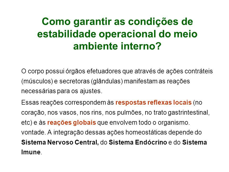 Como garantir as condições de estabilidade operacional do meio ambiente interno