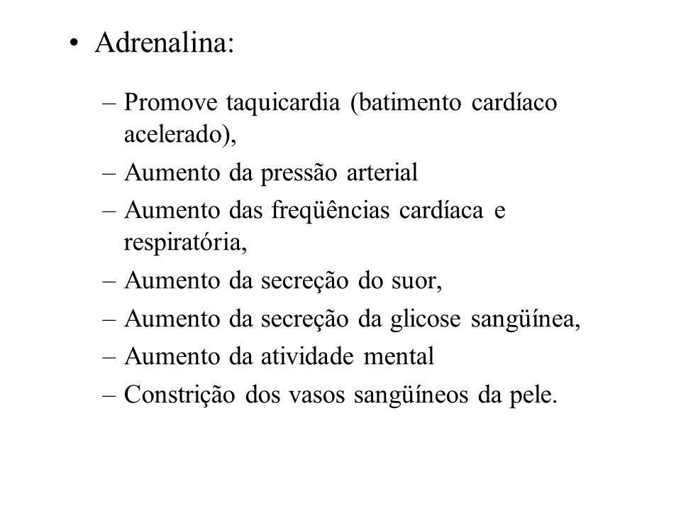 Adrenalina: Promove taquicardia (batimento cardíaco acelerado),