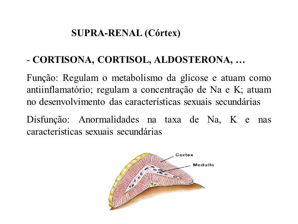 SUPRA-RENAL (Córtex) CORTISONA, CORTISOL, ALDOSTERONA, …