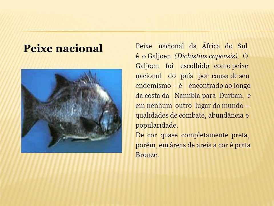 Peixe nacional