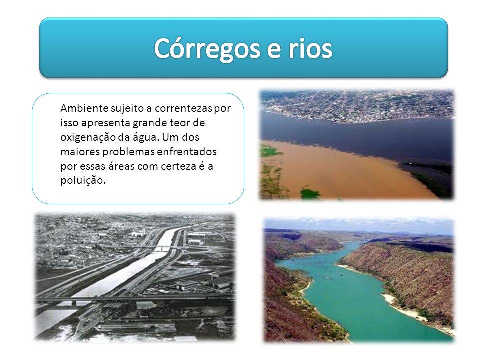 Córregos e rios