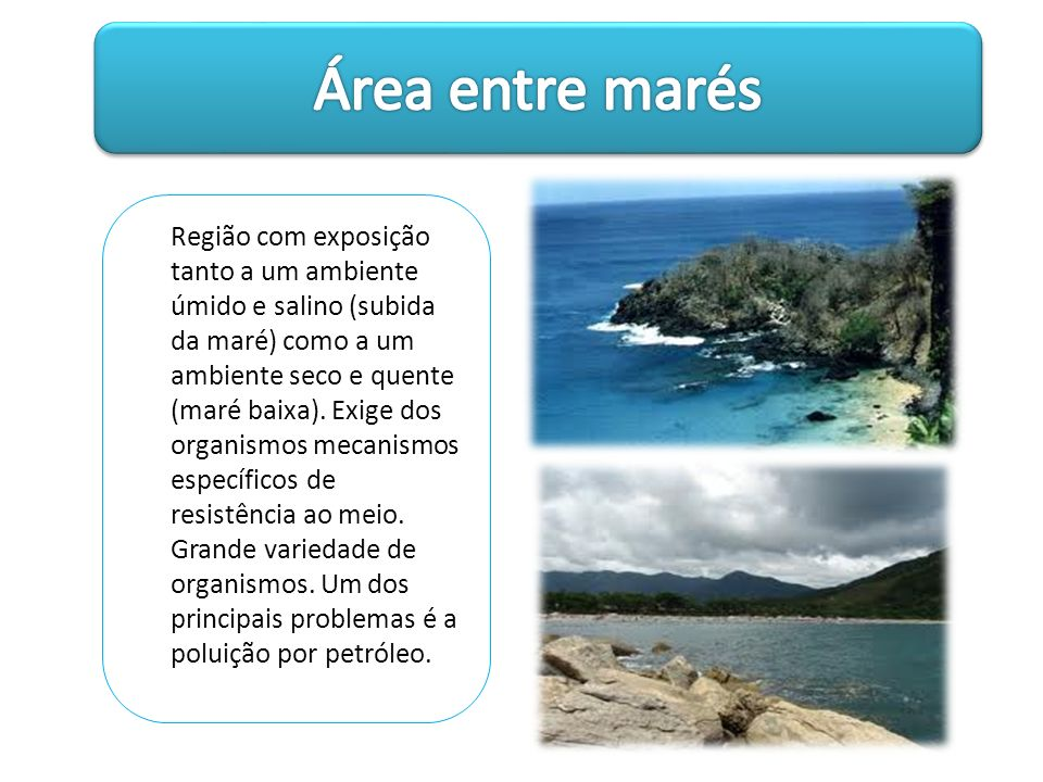 Área entre marés