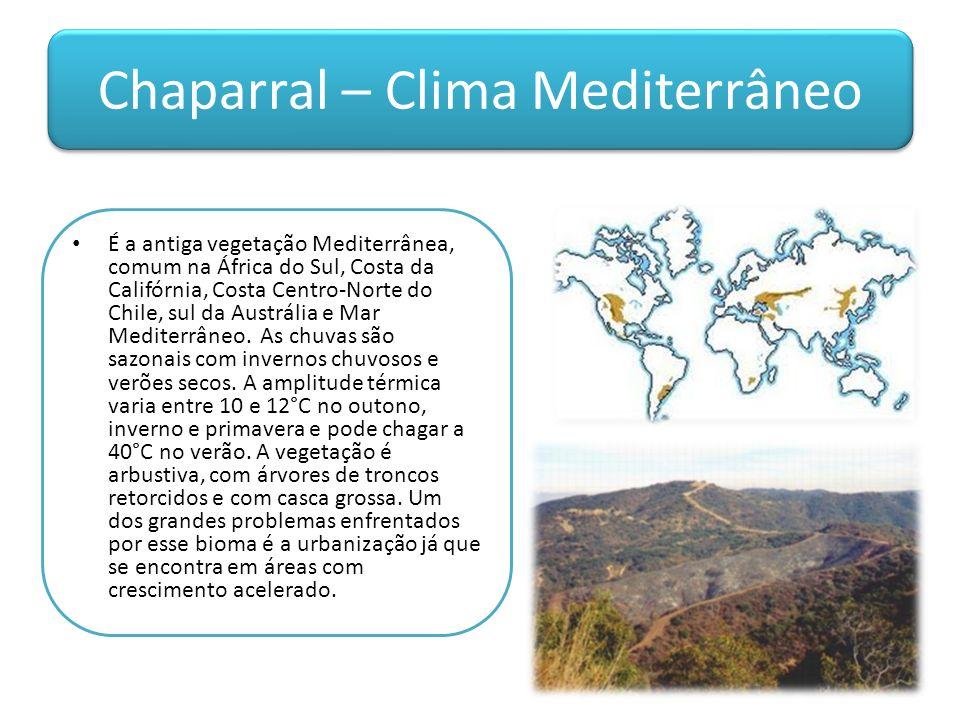Chaparral – Clima Mediterrâneo