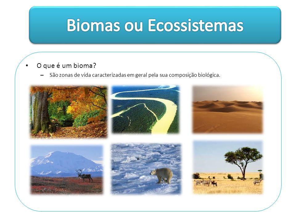 Biomas ou Ecossistemas
