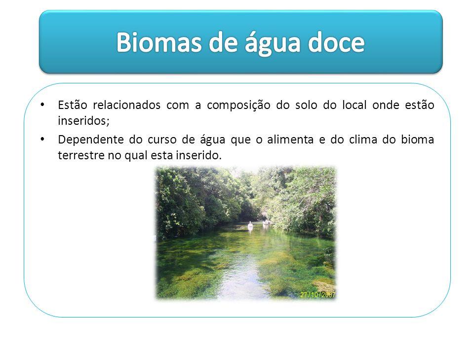 Biomas de água doce Estão relacionados com a composição do solo do local onde estão inseridos;