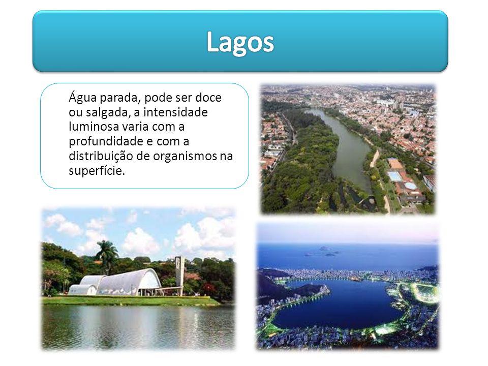 Lagos Água parada, pode ser doce ou salgada, a intensidade luminosa varia com a profundidade e com a distribuição de organismos na superfície.